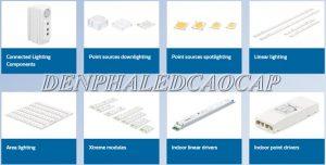 Chip LED Philips: 11 mẫu chip Philips HOT nhất 2021